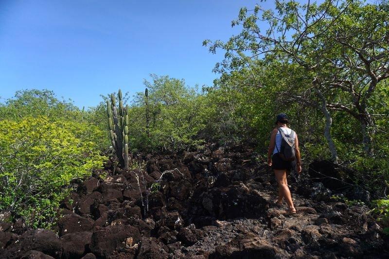 Empezando el camino hacia Cerro Tijeretas