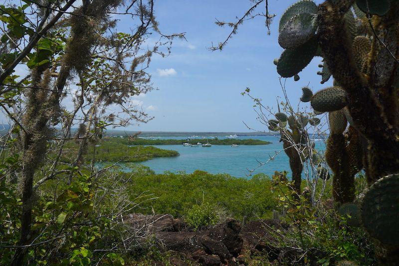 Vistas desde el mirador del sendero de la bahía